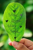 Stay at home. Covid 19 concept . Saty safe photo