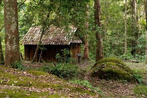 Wooden house in forest photo