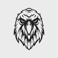 Eagle head drawing vector