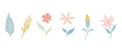 Vector illustration  flowers set