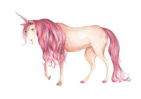 Unicorn with pink colored hairstyle. Watercolor illustration. vector