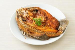 Fried Sea Bass Fish with Garlic photo