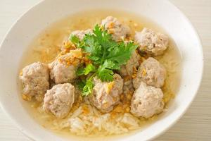 Boiled Rice with Pork Bowl photo