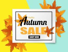 Autumn sale. design with autumn leaves on colorful background. vector