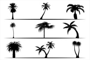 Palm Tree Collection and vector set of palms silhouettes