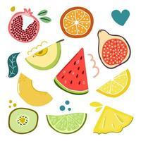 Set of slices and halfs of fruits. Flat illustration. vector
