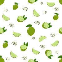 Seamless pattern of lime, citrus, modern flat illustration. vector