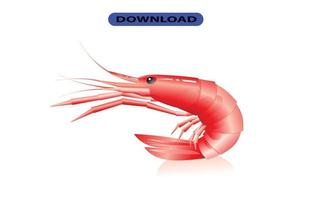 seafood icon or logo high resolution vector