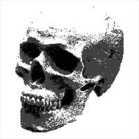 abstract skull illustration vector