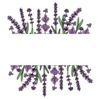 Floral frame with lavender flowers. Vector hand drawn illustration