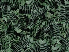 Seamless random fill leaves pattern background photo