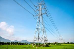 Overhead eletrical transmission line crossing the rice field photo