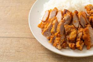 Fried pork topped rice with dipping sauce photo