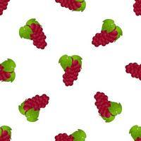 Illustration on theme big colored seamless grape vector
