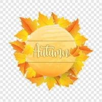 autumn leaves with wooden board on transparent background vector