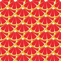 Illustration on theme big colored seamless grapefruit vector