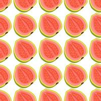 Illustration on theme big colored seamless guava vector