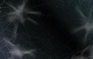 Spider Web Background vector
