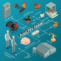 Poultry Farm Isometric Flowchart Vector Illustration