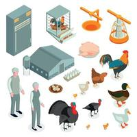 Poultry Farm Isometric Icons Vector Illustration