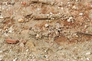 Textura de arena con piedras para el fondo foto