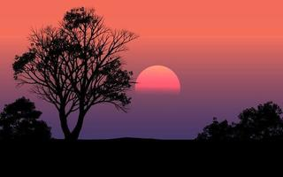 Beautiful Silhouette Sunset Scene In Forest vector