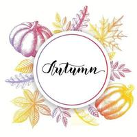 Autumn background with hand drawn leaves and pumpkins. vector