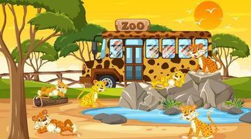 Safari en la escena del atardecer con muchos niños viendo un grupo de leopardos vector