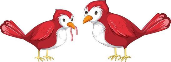 Two red bird catching worm in cartoon style isolated vector