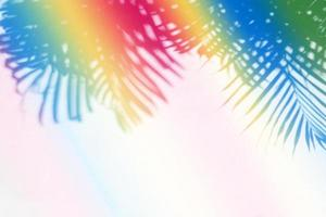 Colorful tropical palm leaf shadow on paper wall  background photo