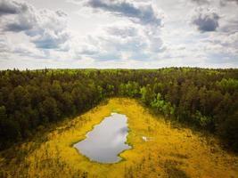Vista aérea vertical del lago niauka en el parque regional de kurtuvenai, lituania campiña, naturaleza y flora foto
