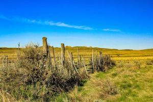 rancho dixon en verano. pastizales. parque nacional, Saskatchewan, Canadá foto