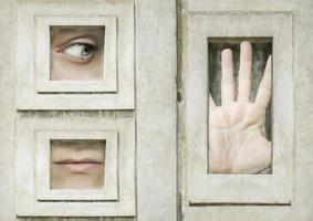 Let Me Out photo