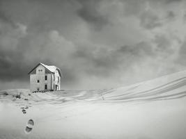 Alone in the Snow black and white photo