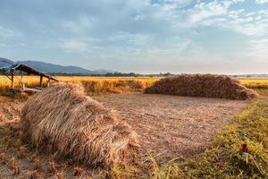 The haystacks  and the beautiful sky photo