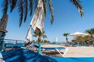 Tumbonas de playa vacías bajo palmeras sin gente foto