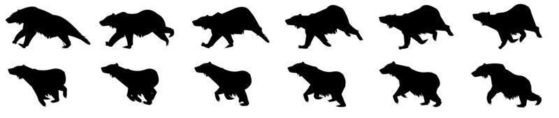 Bear Run Cycle vector
