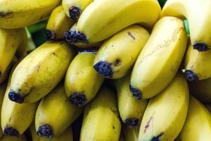 Plátanos en una plantación en la isla de Madeira. foto