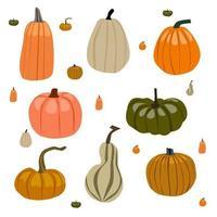 pumpkin autumn themes set vector