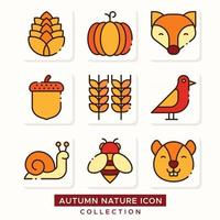 Flora Fauna Autumn Weather Nature Icon Collection vector