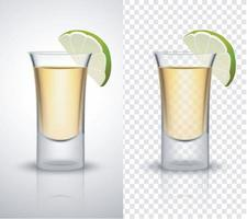 Gin tonic or vodka lime vector