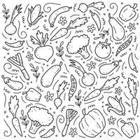 Hand drawn set of vegetables. Vector illustration of doodle skecth