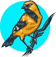 bird illustration with solid color vector