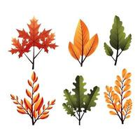 Autumn Leaf Icon Concept vector