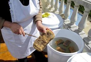DoenJang, traditional Korea food. Fermentation of soybean paste photo
