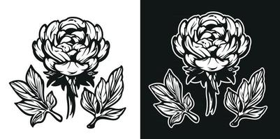 Black and white illustration of the Peony flower. vector