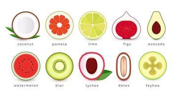 conjunto de iconos de primer plano de frutas, verduras y bayas. comida tropical exótica vector