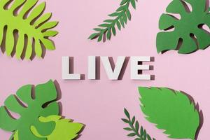 Nature lettering leaves paper style photo