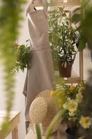 la casa de jardinería con plantas foto