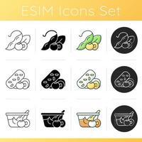 Conjunto de iconos de comidas de soja vector